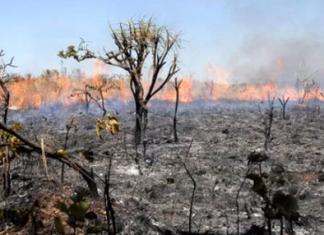 Amazônia está secando