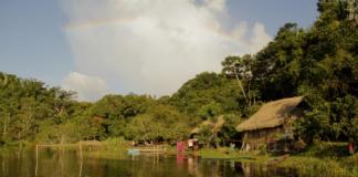 Gestão da Amazônia na primeira do plural