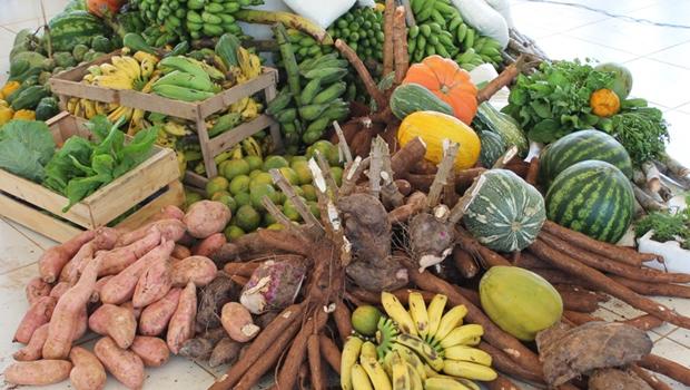 Desafios à produção de alimentos no AM