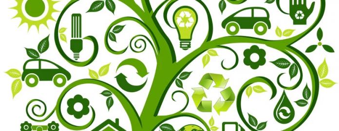 Ecologia Economia e Política